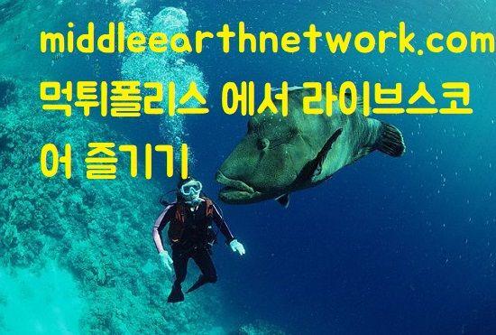 middleearthnetwork.com 먹튀폴리스