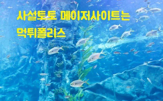 middleearthnetwork.com 사설토토 안전놀이터 먹튀상담